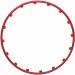 17 colių aliuminio ratlankių apsaugos - tiuningas